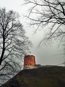 башня прибалтика